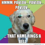 -business-dog-pavlov_20120516092609