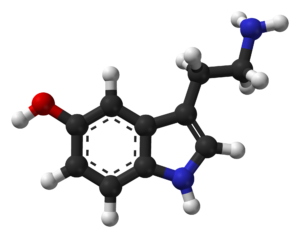serotonin neuroscience gamification