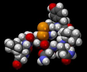 oxytocin neuroscience gamification